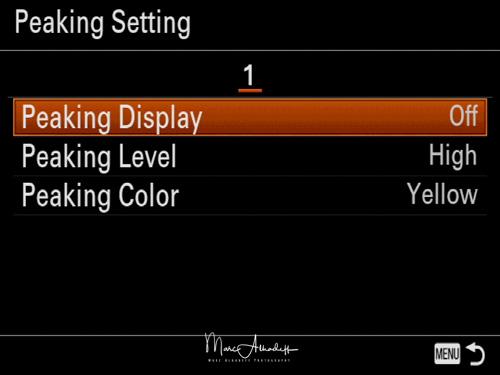 Sony A7RIII menu english-28