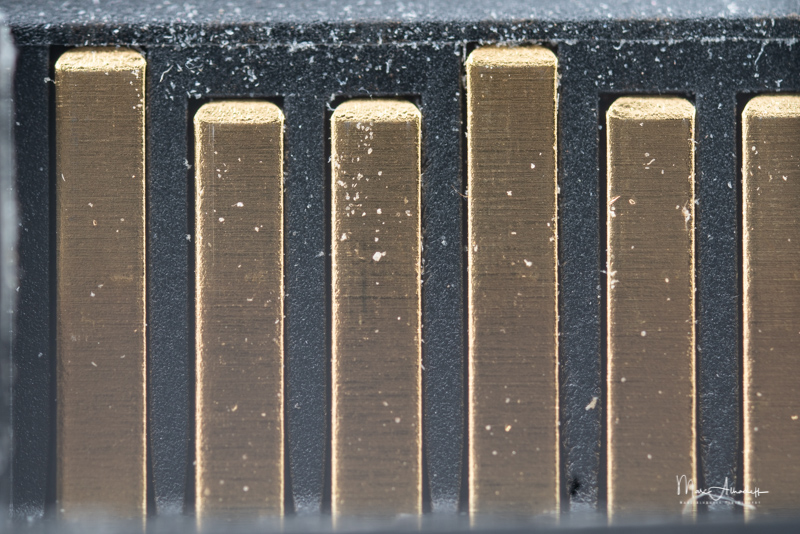 5x, F4, Laowa 25mm F2.8 2.5-5X- ISO 800-1-6 s 014
