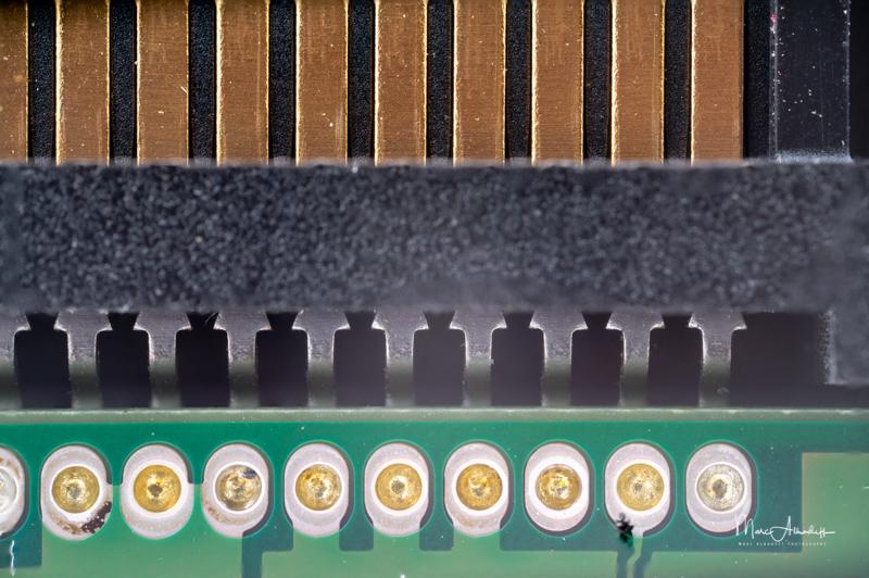 Laowa 25mm F2.8 2.5-5X, stacking 10 photos- - 019