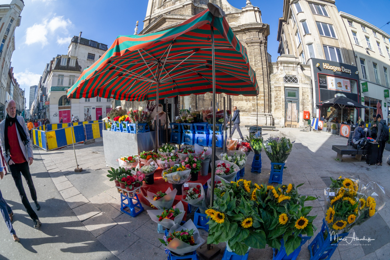 Meike 8mm F3.5 Fisheye- ISO 100-1-200 s 008